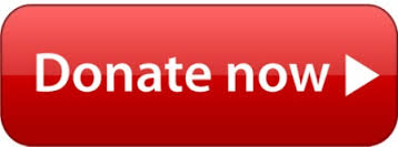 donate.red.button